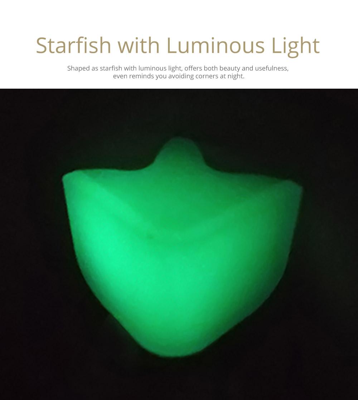Starfish with Luminous Light