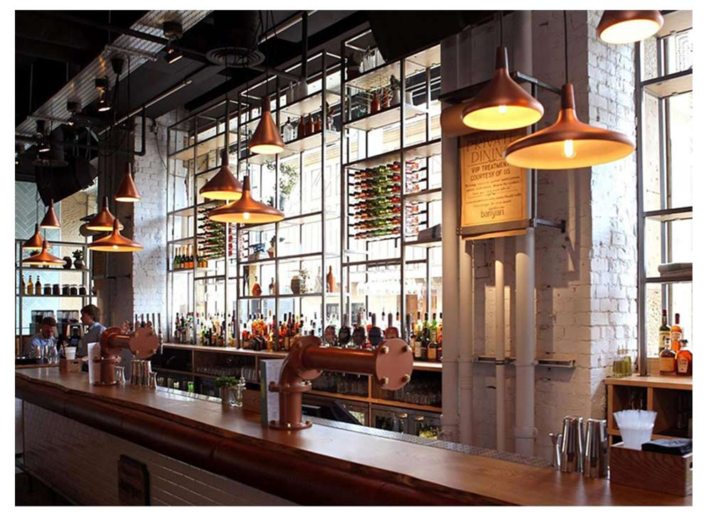 Restaurant Chandelier - Nordic Modern Iron Chandelier, LOFT Light, Contracted Single Head Lamp 12