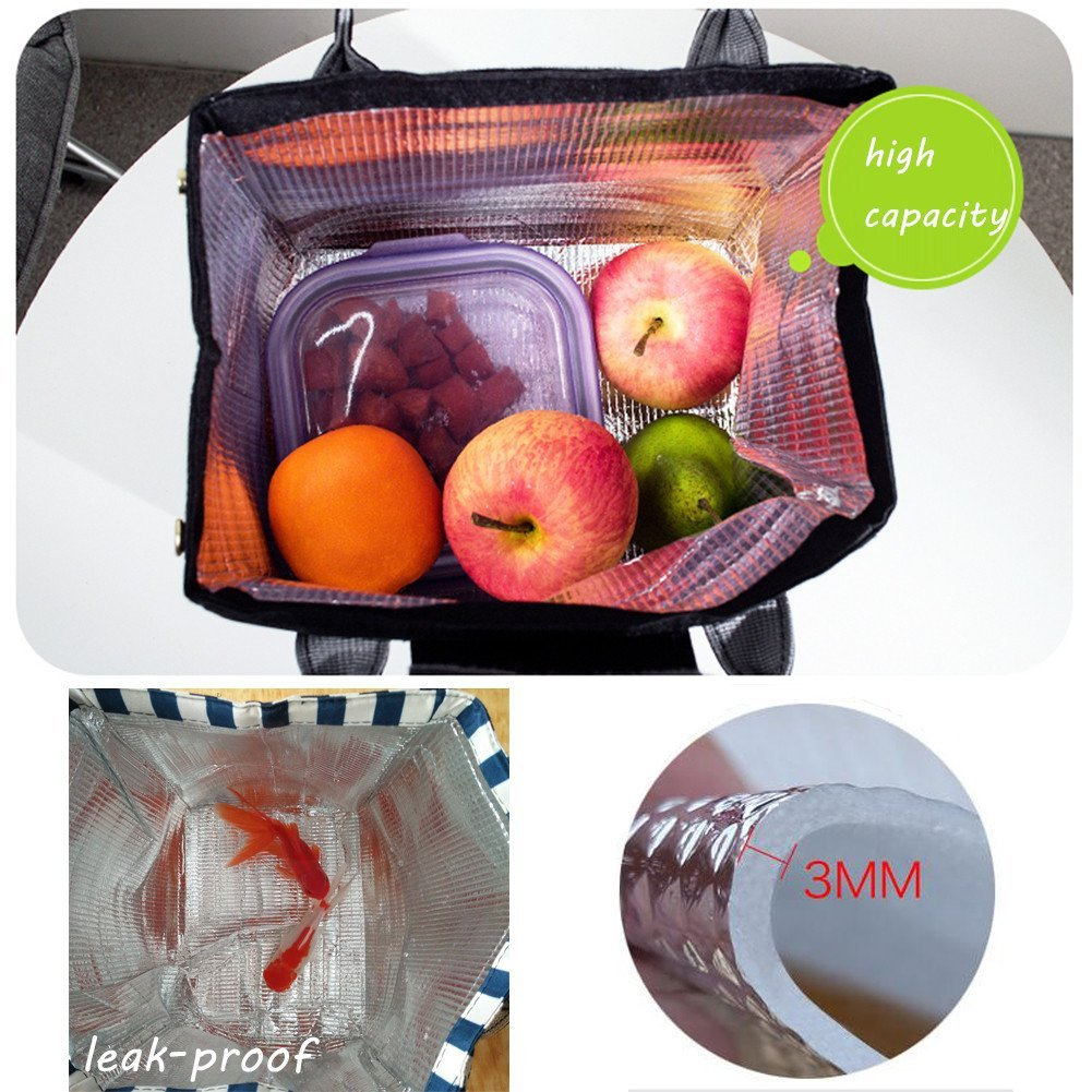 Reusable Lightweight Insulated Lunch Tote Cooler Bag