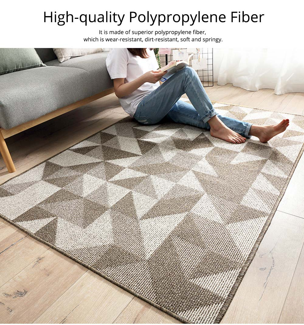 Double Layer Woven Carpet, Modern Style Non-slip Rugs for Living Room, Bedroom 3