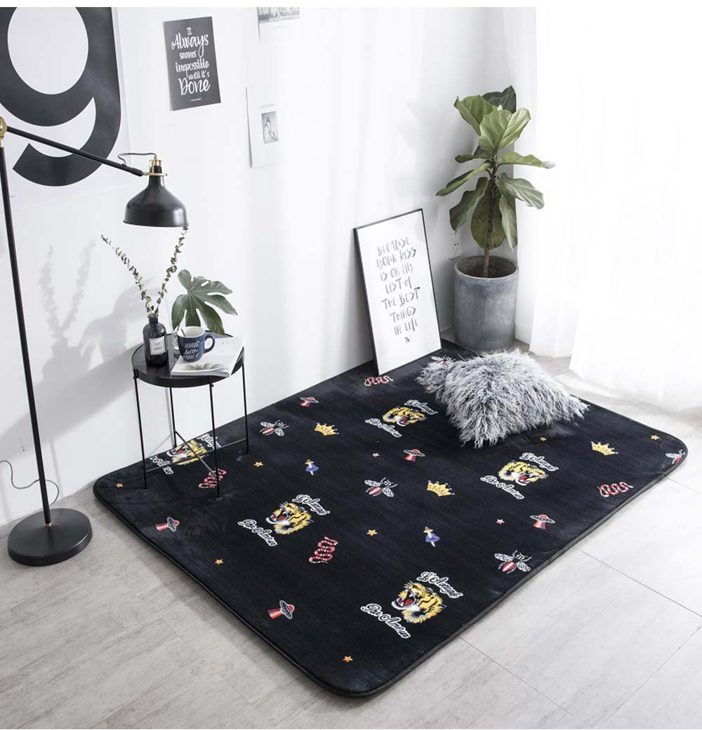 Flannel Rugs Modern Design Floor Mat, Non-slip Shaggy Fluffy Rugs for Living Room, Bedroom 13