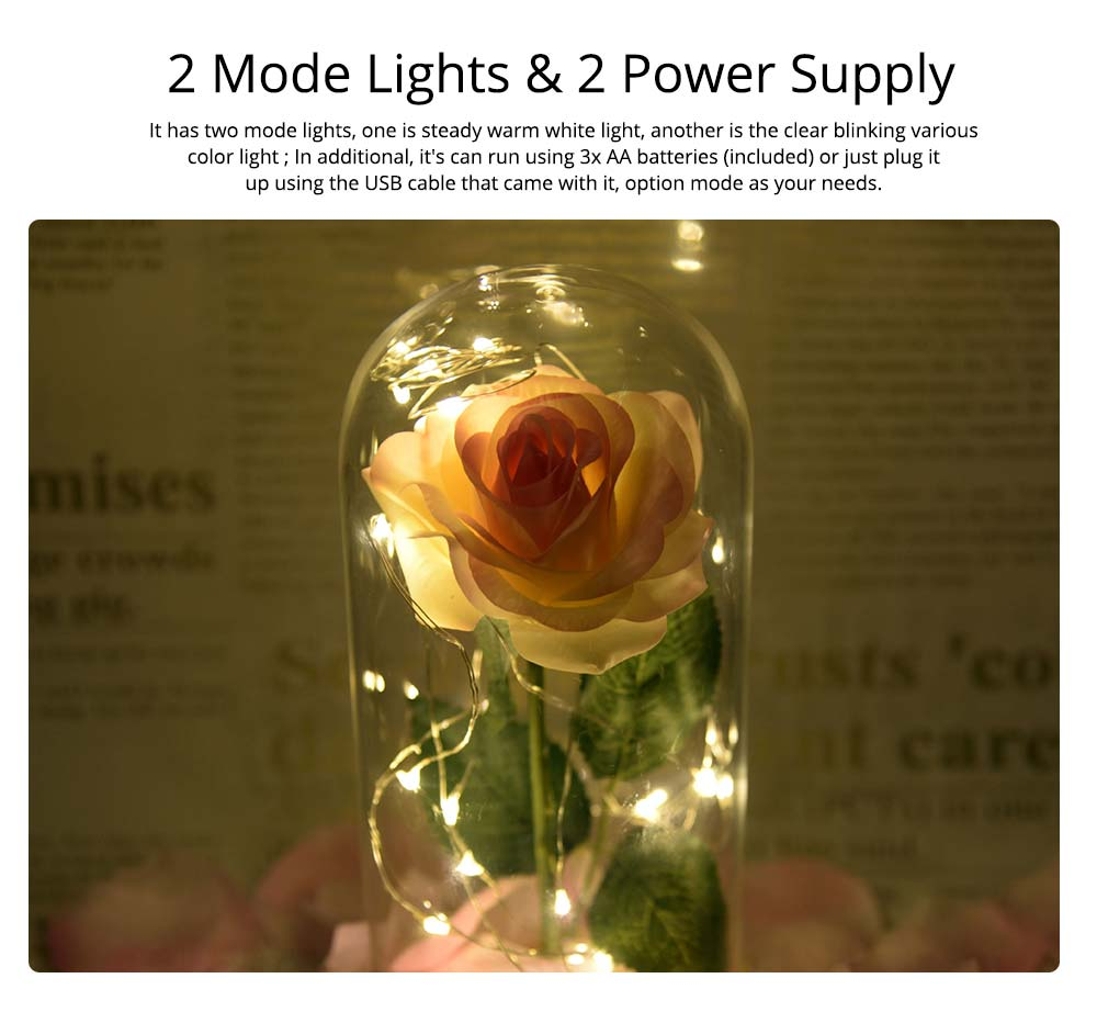 Champagne Roses Lamp with LED Fairy String Lights, Fallen Petals and ABS Base in A Glass Dome Valentine's Day Romantic Gifts 3