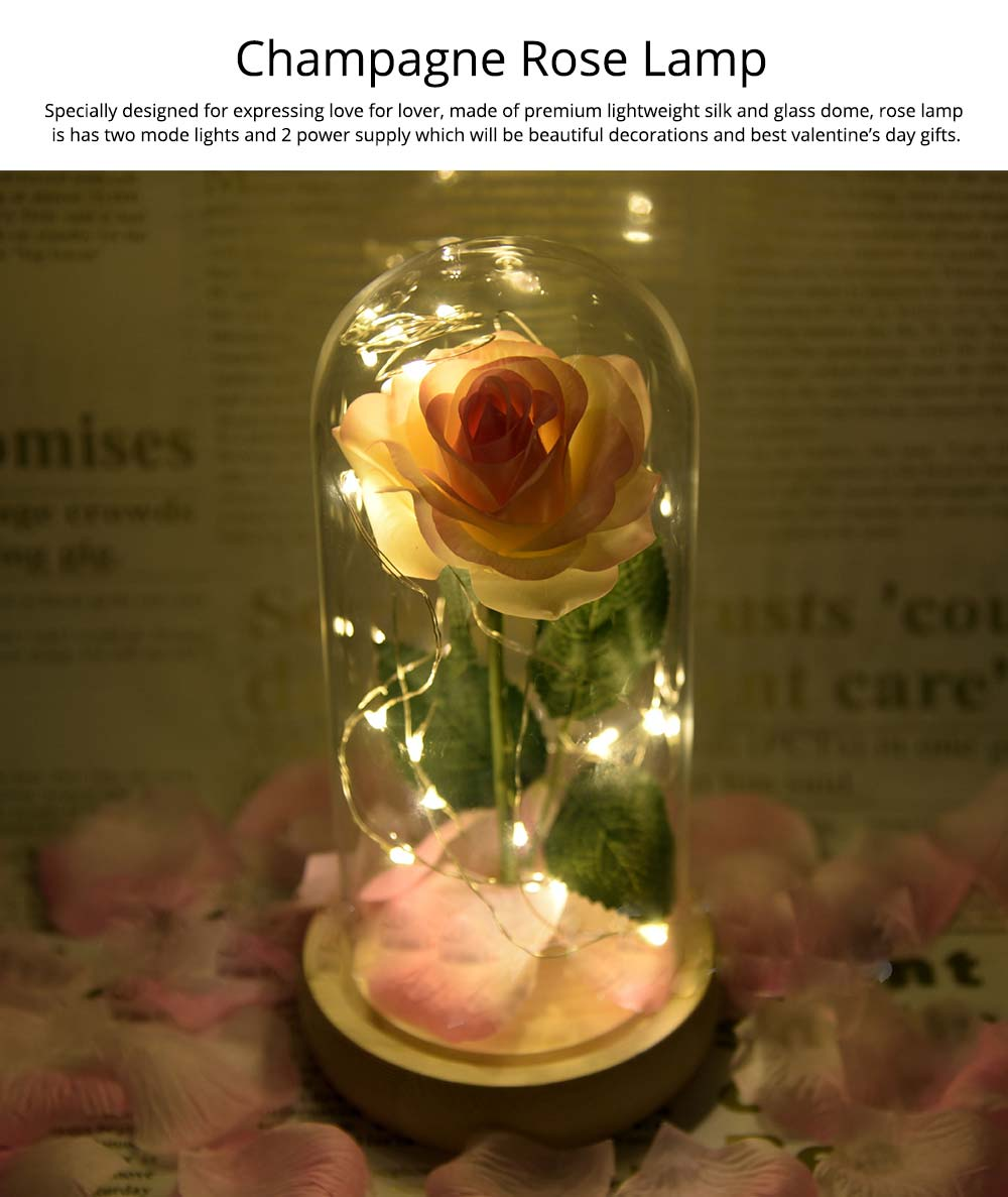 Champagne Roses Lamp with LED Fairy String Lights, Fallen Petals and ABS Base in A Glass Dome Valentine's Day Romantic Gifts 0