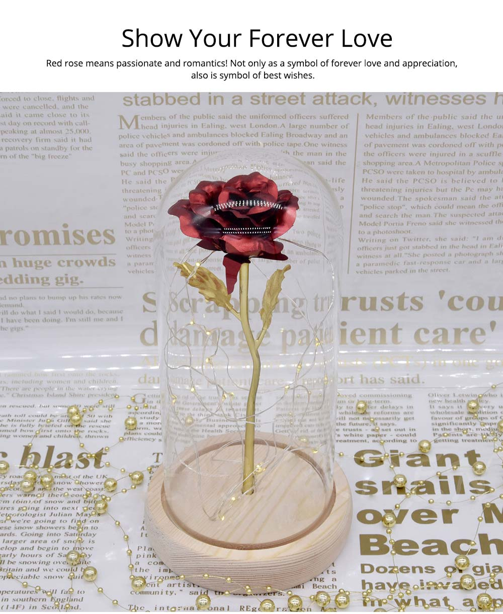 Valentines Day Presents - Gold Roses Lamp with Fairy String Lights, Fallen Petals and ABS Base in A Glass Dome 9