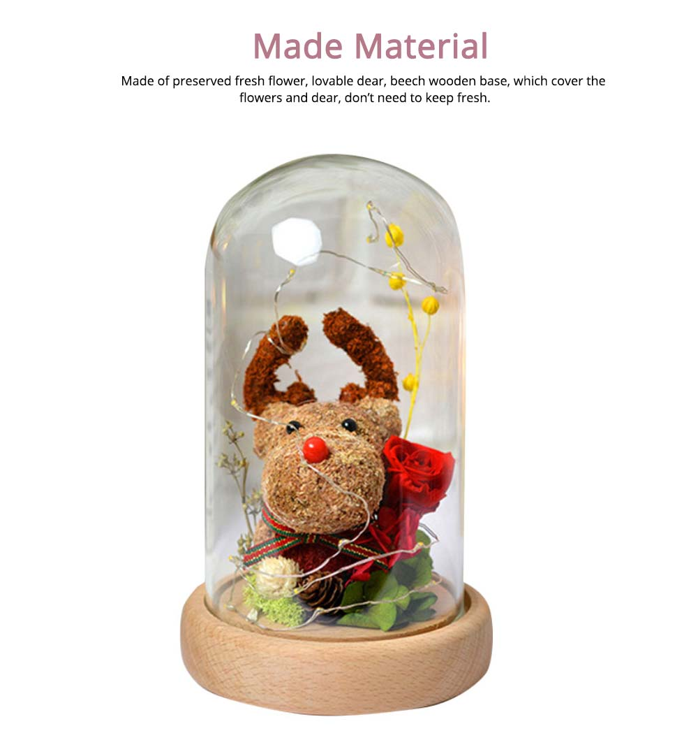 Preserved Flowers In Glass, Romantic Valentine's Day Christmas Gift Preserved Fresh Rose with Deer Decoration for Girl 3