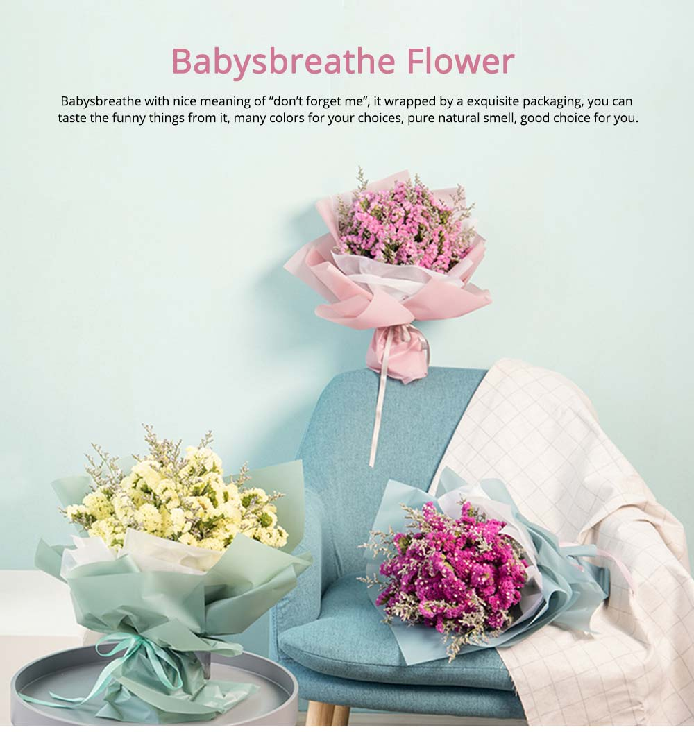 Baby's Breathe Flower for Wife Girlfriend,, Festive Gift Dried Flowers Real Flowers 0