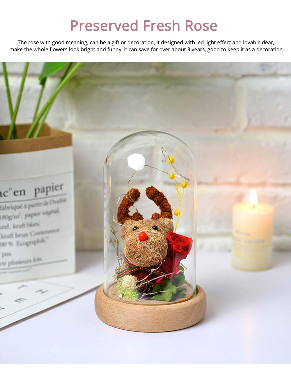 Preserved Flowers In Glass, Romantic Valentine's Day Christmas Gift Preserved Fresh Rose with Deer Decoration for Girl 0