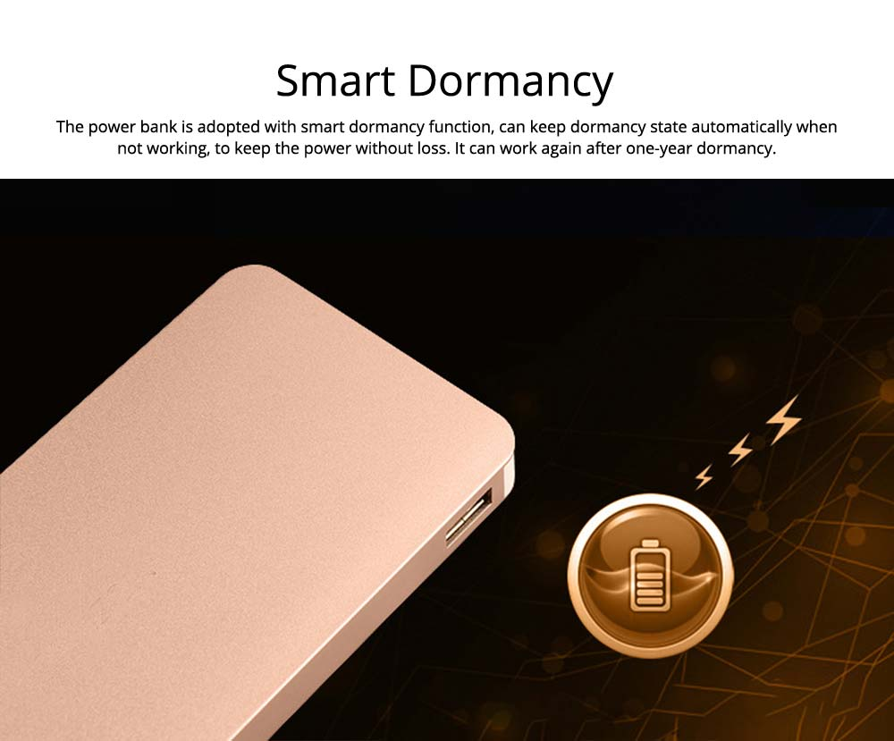 Power Bank 20000mAh, Ultra Thin Phone Charging External Battery Charger Power Bank for Cell Phone, 2 USB Socket 13