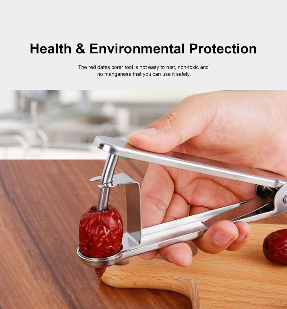 Red Dates Corer Tool, 304 Stainless Steel Cherry Hawthorn Fruit Practical Creative Pitter for Household Easy Removal Core Seeder 4