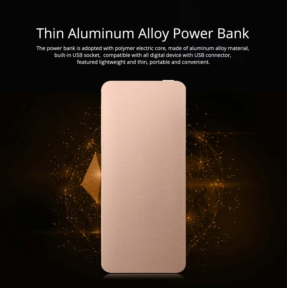 Power Bank 20000mAh, Ultra Thin Phone Charging External Battery Charger Power Bank for Cell Phone, 2 USB Socket 10