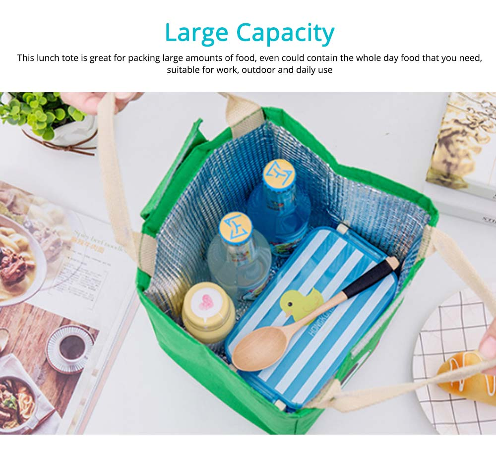 Cartoon Pattern Insulated Bag with Reinforced Handle, Portable Picnic Lunch Waterproof Cooler Bag for School, Office, Camping 4