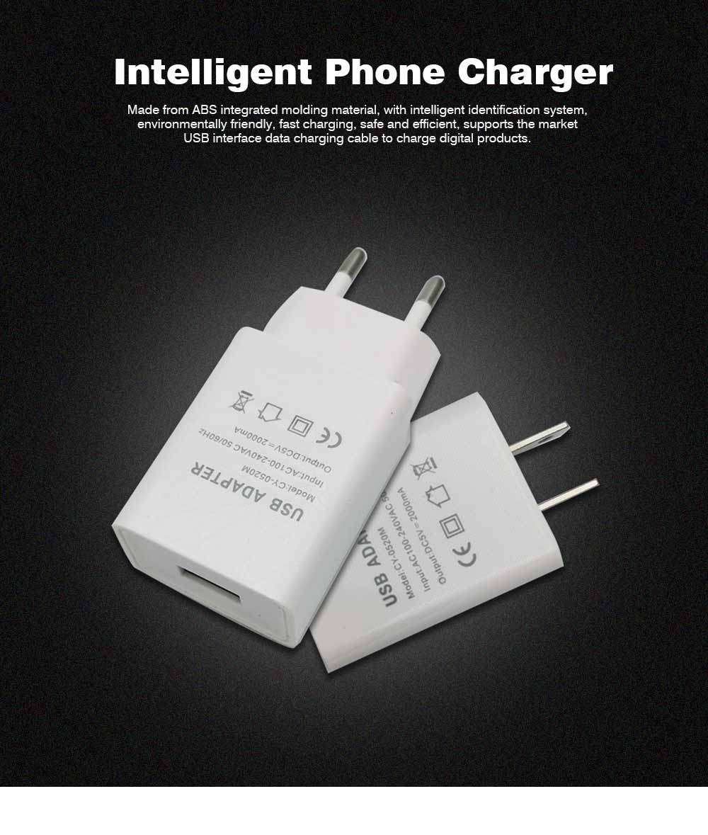 Intelligent Phone Charger, Charger for iPhone, SmartPhone, 2A USB Mobile Phone Charger 0