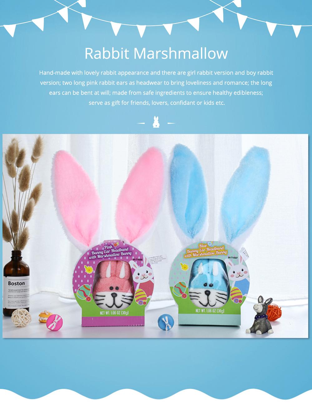 Rabbit Shape Marshmallow for Girlfriend as Birthday Gift, Creative Rabbit Cotton Candy A Pair as Present Rabbit Candy Floss 0