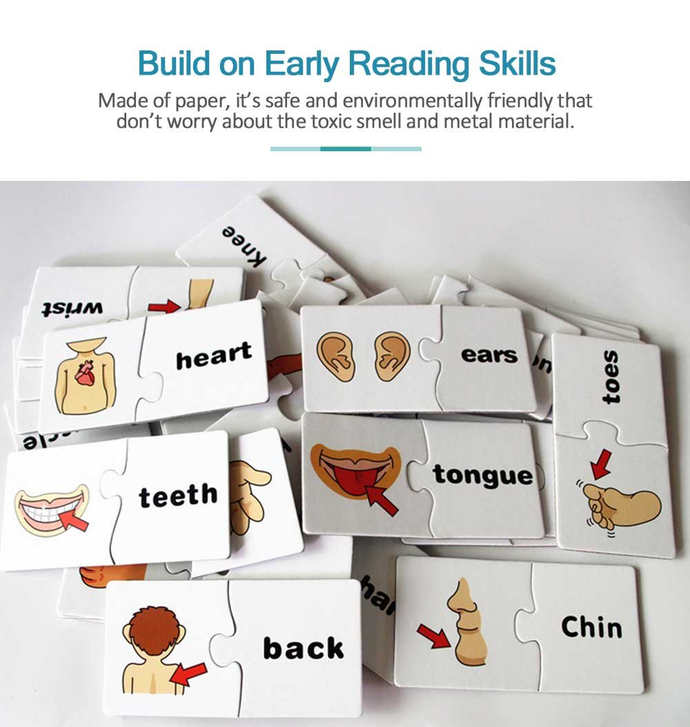 Human Body Puzzle Early Education Educational Toy Puzzle Learning English Spell Word Pairing 2