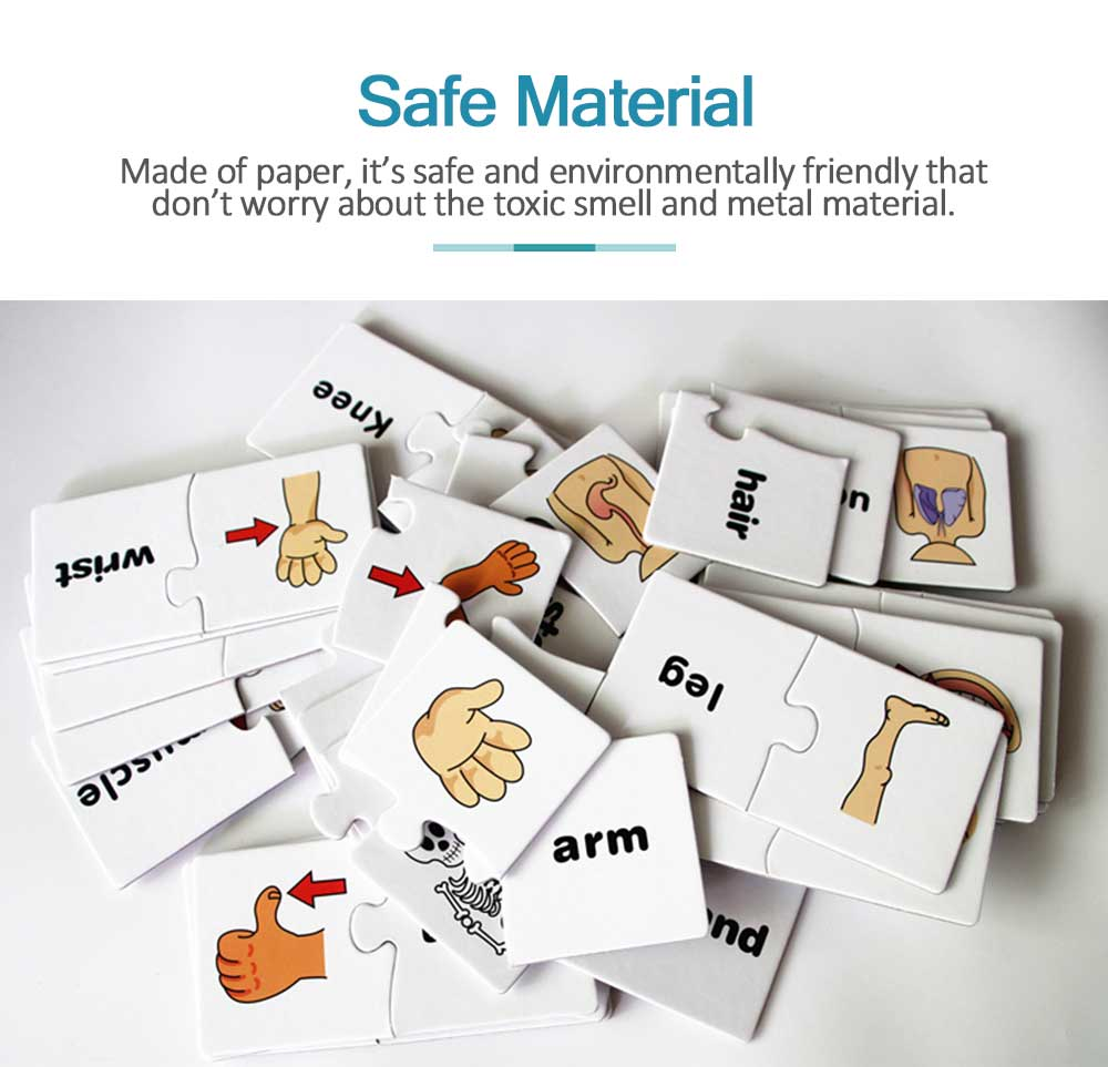 Human Body Puzzle Early Education Educational Toy Puzzle Learning English Spell Word Pairing 1
