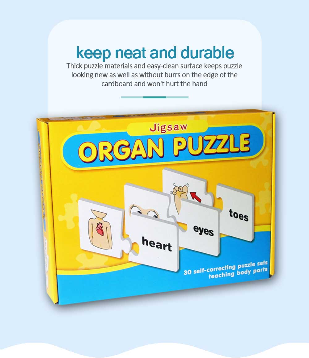 Human Body Puzzle Early Education Educational Toy Puzzle Learning English Spell Word Pairing 5