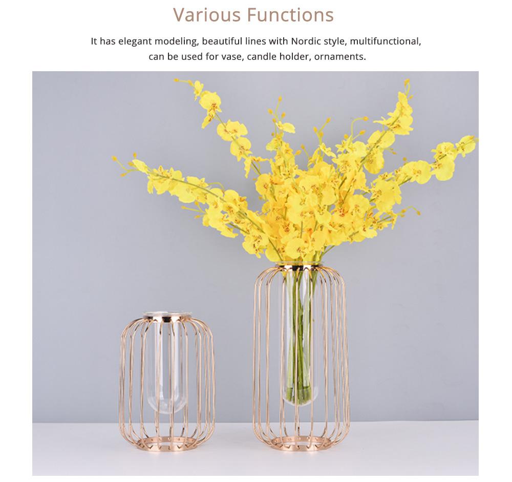 Luxury Nordic Style Vase with Wrought Iron Art, Lantern-shaped Holder with Glass Tube Inside 3