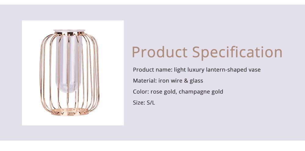 Luxury Nordic Style Vase with Wrought Iron Art, Lantern-shaped Holder with Glass Tube Inside 6