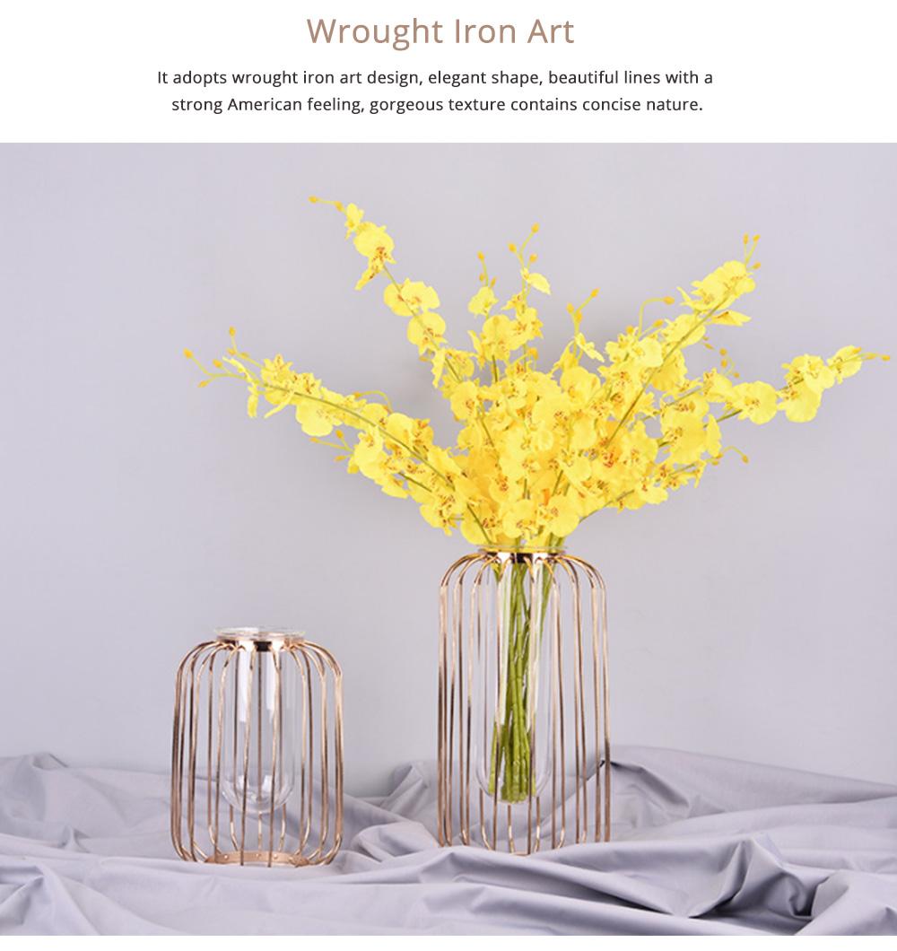 Luxury Nordic Style Vase with Wrought Iron Art, Lantern-shaped Holder with Glass Tube Inside 5