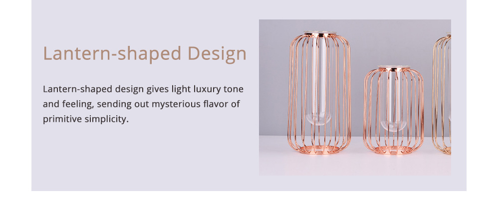 Luxury Nordic Style Vase with Wrought Iron Art, Lantern-shaped Holder with Glass Tube Inside 2