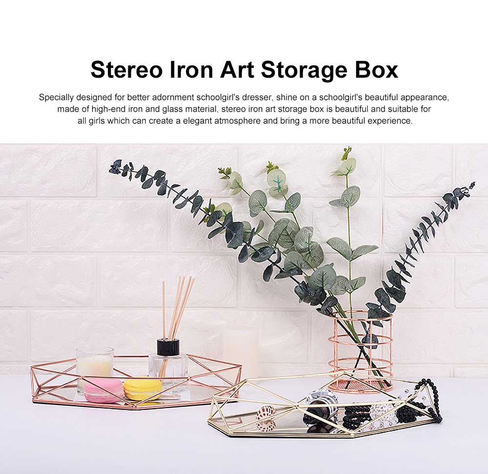 Iron Wire Art Storage Box, Acrylic Storage Basket Cosmetic Jewelry Toy Storage Box 0