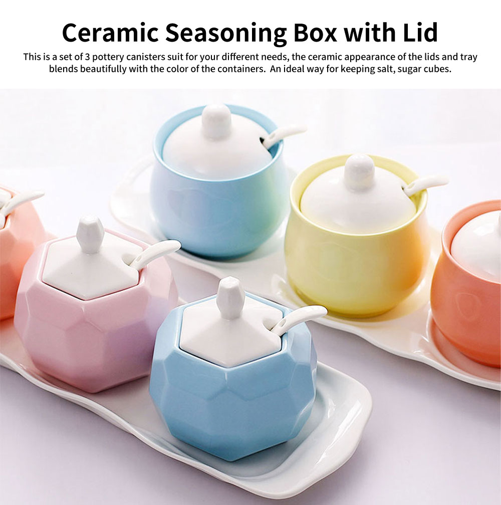 Condiment Set Spice Box With Spoon Lid And Base, Macaron Color Condiment Container Seasoning Box Set 0