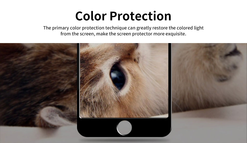 Tempered Glass Screen Protector for iPhone Full Screen Protect 5