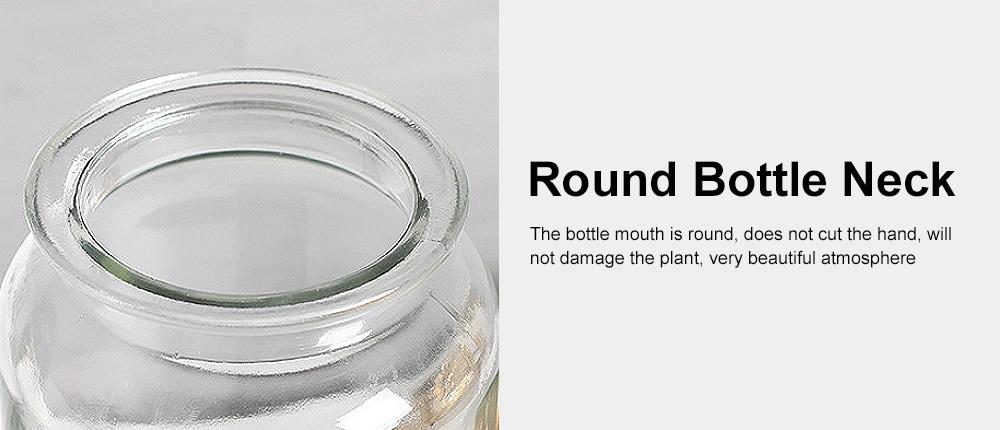 Transparent Glass Cylindrical Vase With Non-Slip Bottom 3