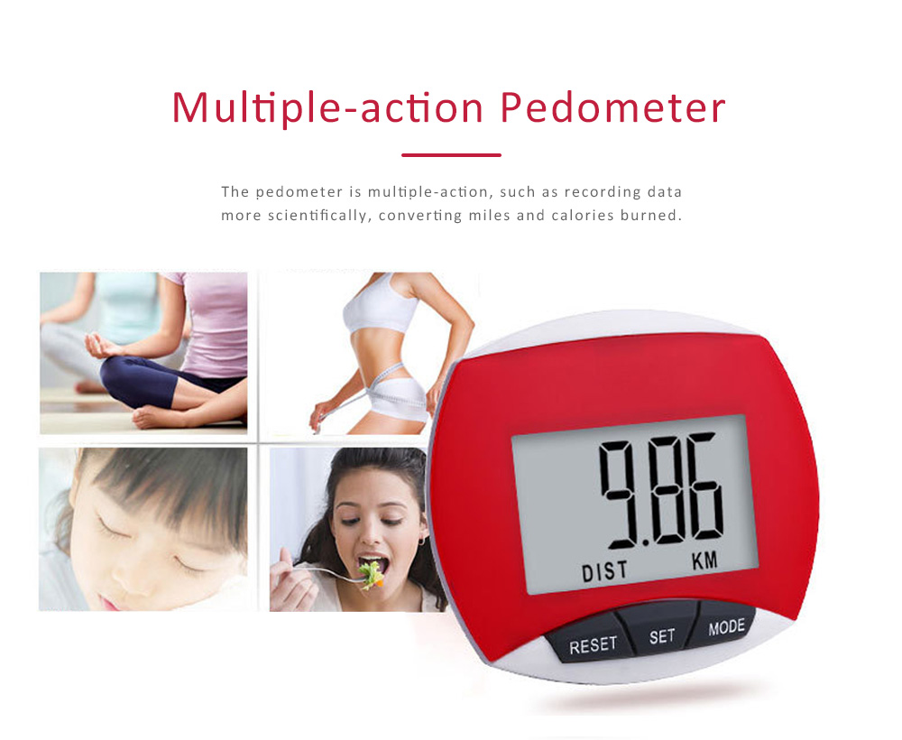 Small Acrylic Pedometer for Calculating Step Multifunction Electronic Sport Device 5
