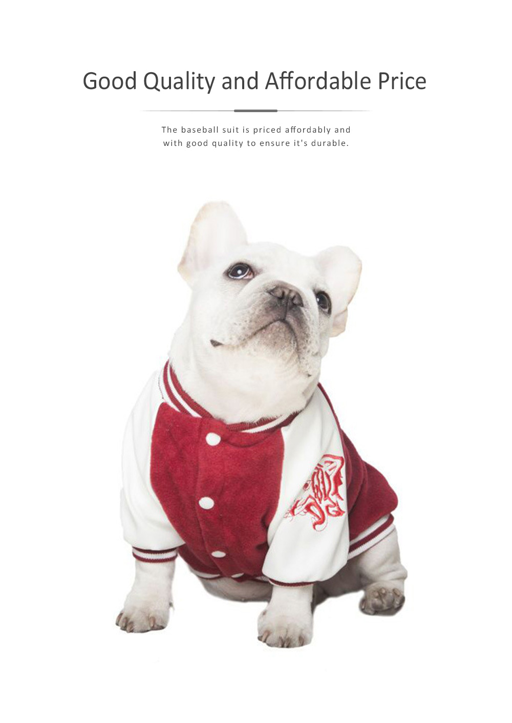 Dog Baseball Costume Double-layer Embroidered New-style Baseball Suit for Both Big and Small Size Dogs in Autumn and Winter 3