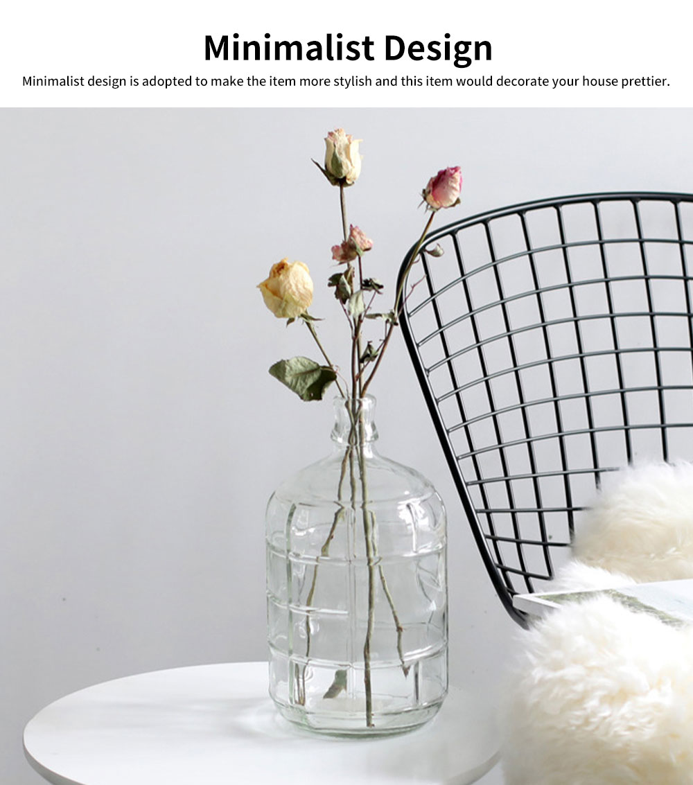 Minimalist Transparent Flower Vase,  Small Caliber Large Body, Household Table Decoration Ornament Glass Bottle 4