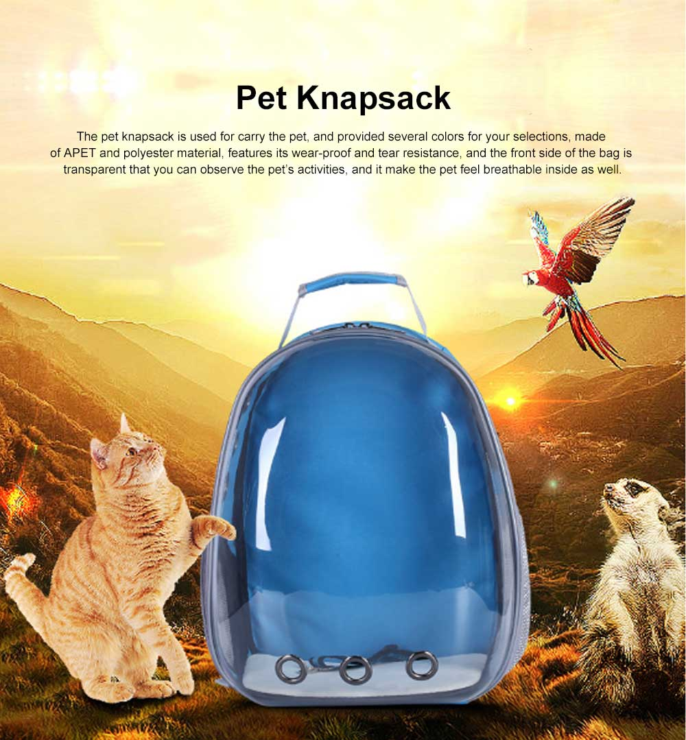 Pet Bag APET Polyester Backpack Breathable Knapsack for Cat Dog Tear-resistance Pack-sack Vent Rucksack 0