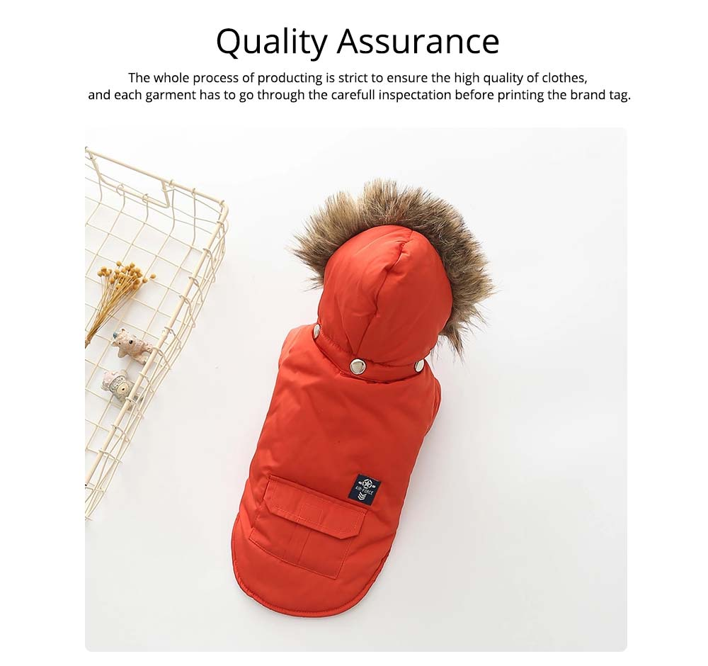 Pet Dog Clothes Two Legs Down Coat with Hat for Puppy Autumn Winter New Arrival 3