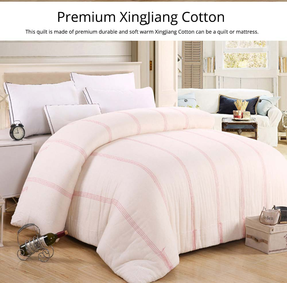 Red Line Reinforced Quilt Premium Cotton Autumn And Winter Quilt Hypoallergenic Soft Warm Covered Quilt Wholesale 1