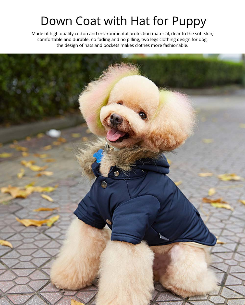 Pet Dog Clothes Two Legs Down Coat with Hat for Puppy Autumn Winter New Arrival 0