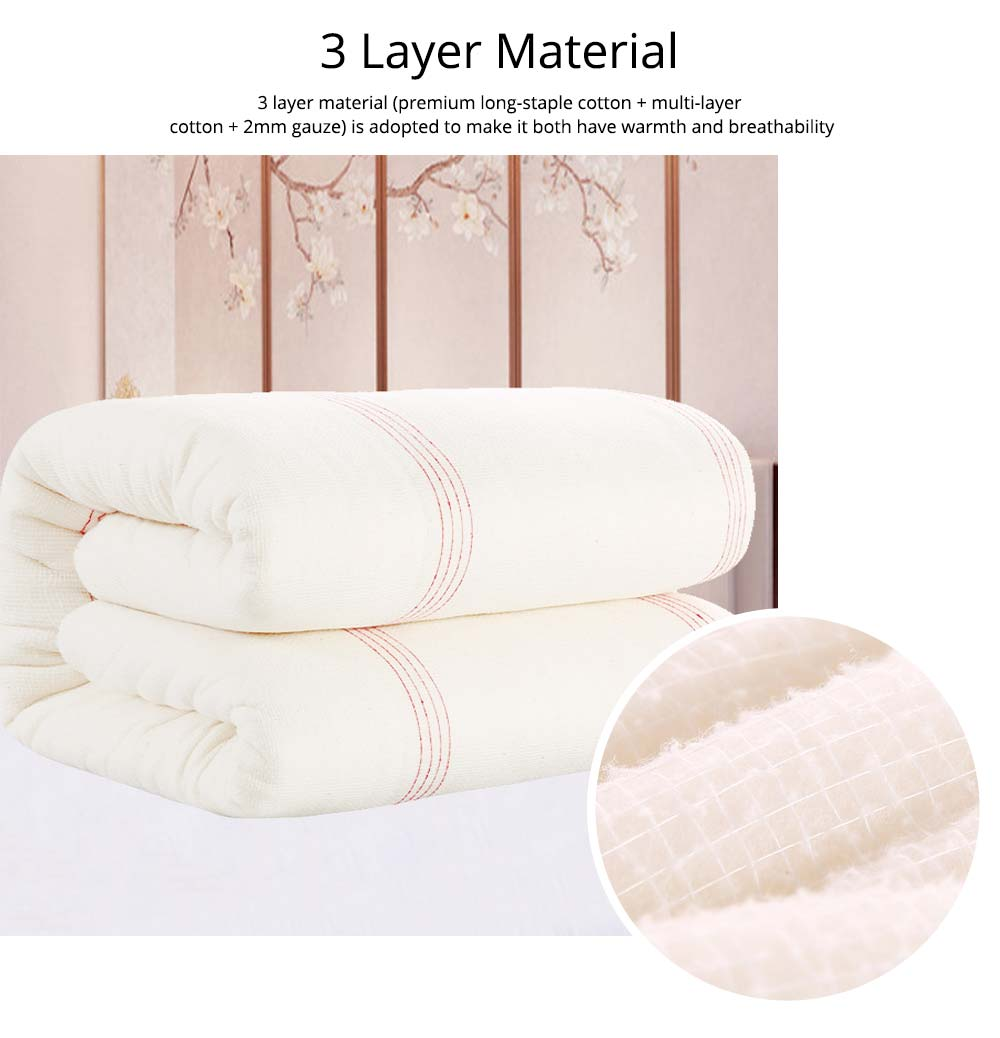 Red Line Reinforced Quilt Premium Cotton Autumn And Winter Quilt Hypoallergenic Soft Warm Covered Quilt Wholesale 5