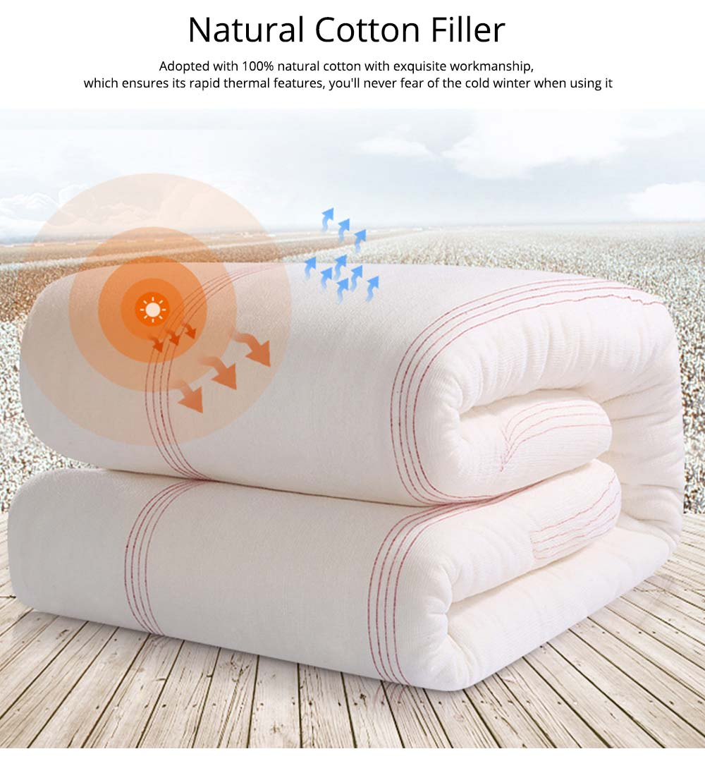 Red Line Reinforced Quilt Premium Cotton Autumn And Winter Quilt Hypoallergenic Soft Warm Covered Quilt Wholesale 4