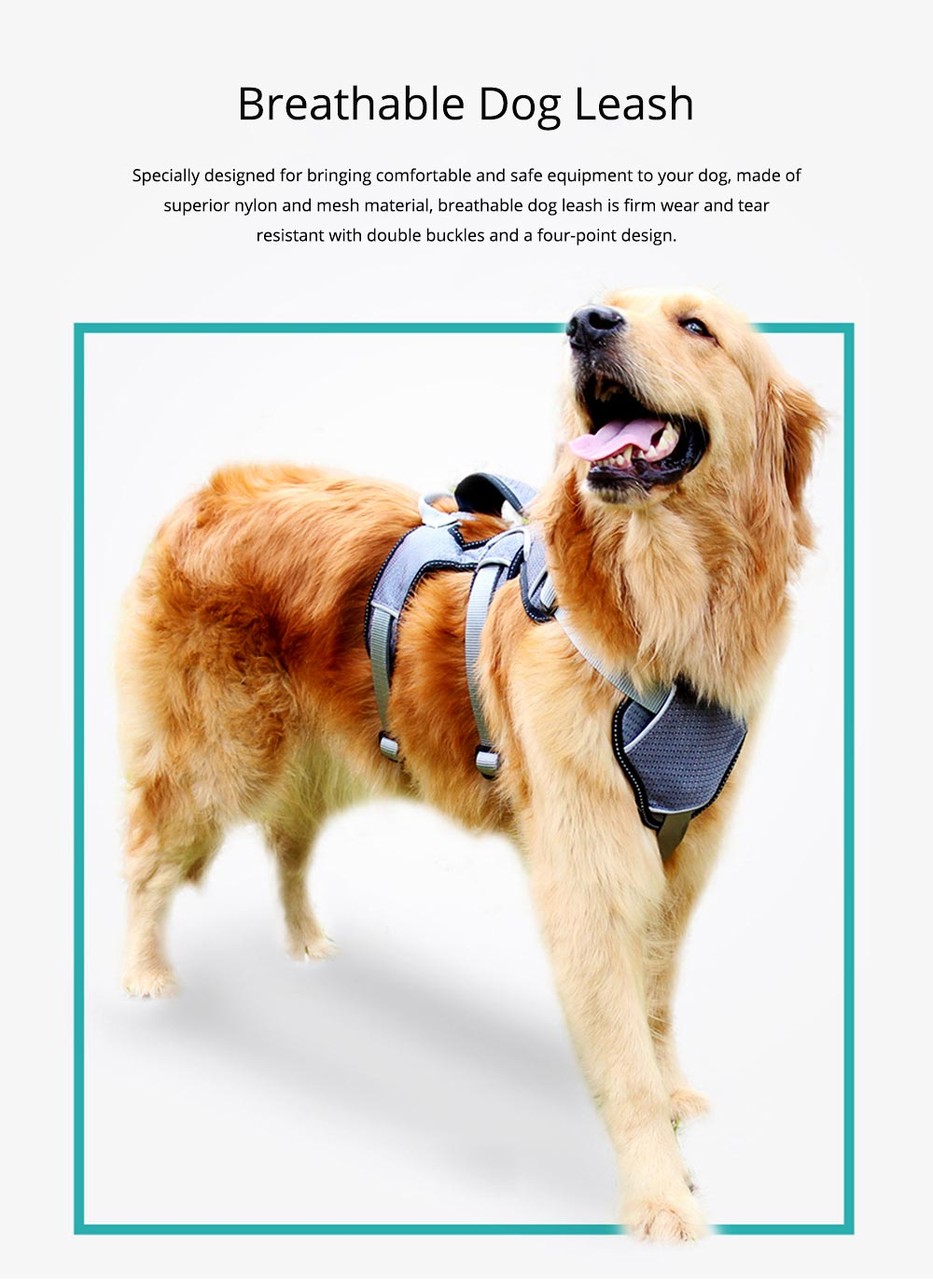 Breech Strap with Double Buckles and Six-point Design, Breathable & Holds Dog's Neck Rope for Medium-sized Large Pet Dog 0