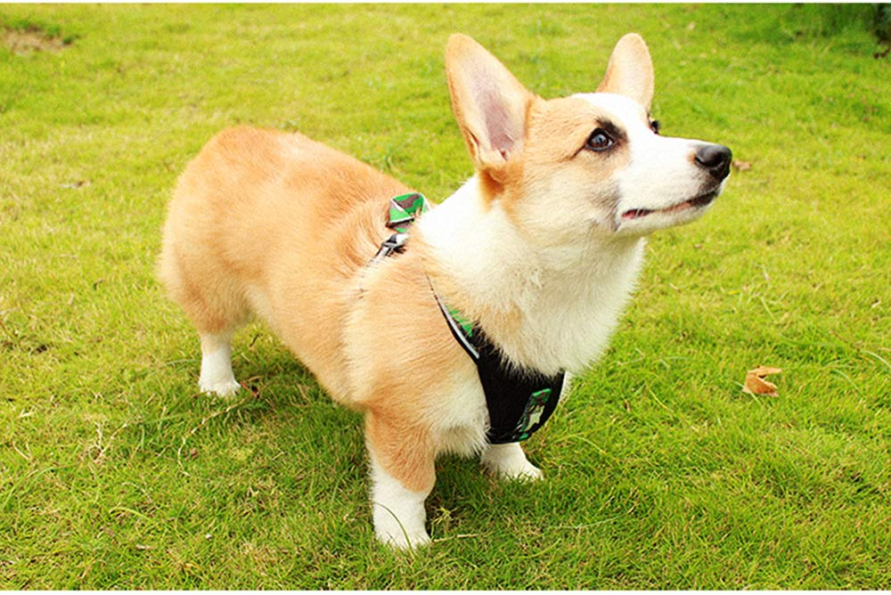 Pet Triangle Chest Strap for Medium-sized Large Dog, Dog Safety Vest Harness with Double Buckles and Zinc Alloy Ring 4