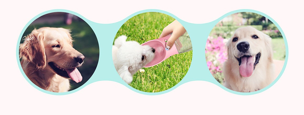 Pet Eco-friendly Drinking Cup Portable Drinking Bowl with Two Colors for Travel Outside 8