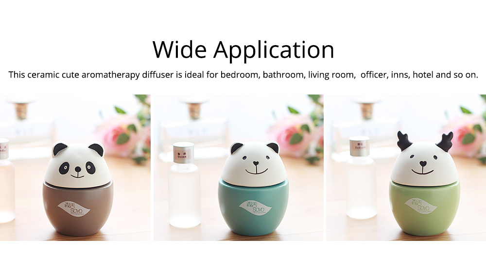 Innovative Design Aromatherapy Diffuser No fire No Electricity with Aromatherapy Oil for Indoor Use 5