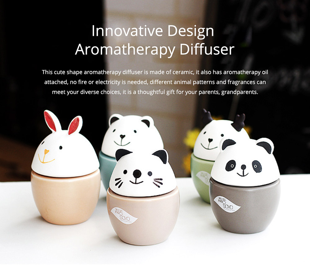 Innovative Design Aromatherapy Diffuser No fire No Electricity with Aromatherapy Oil for Indoor Use 0