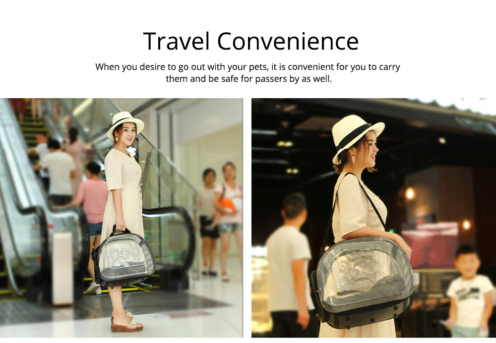 Transparent Pet Carrier Travel Bag, Foldable Portable Bag with Breathable Holes and Zipper Opening 1