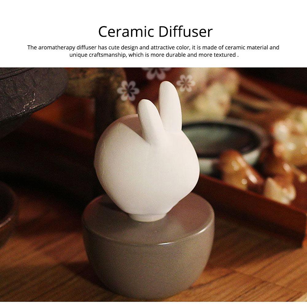 Innovative Pet Ceramic Aromatherapy Case Set Eco-friendly Fresh with Essential Oil 1