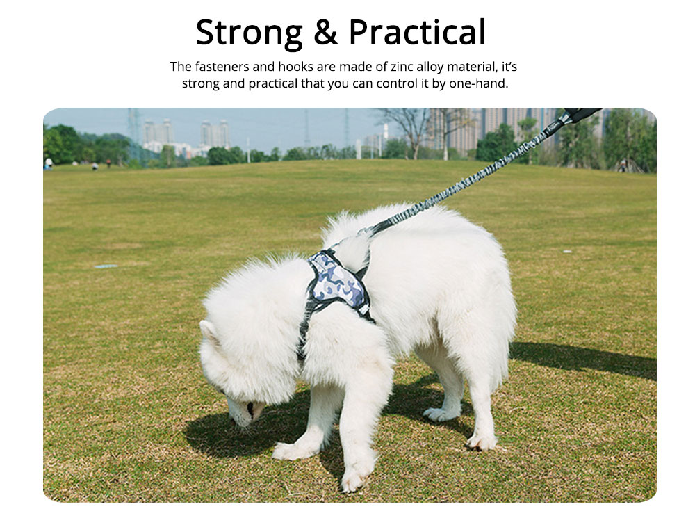 Dog Chain Zinc Alloy Foam Material Stretched Contracted Dog Leash Flexible Strong Dog Lead 3