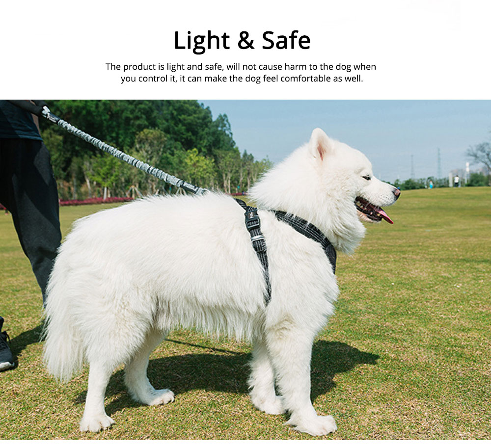 Dog Chain Zinc Alloy Foam Material Stretched Contracted Dog Leash Flexible Strong Dog Lead 5