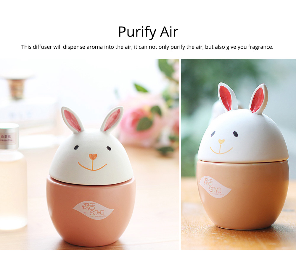 Innovative Design Aromatherapy Diffuser No fire No Electricity with Aromatherapy Oil for Indoor Use 2