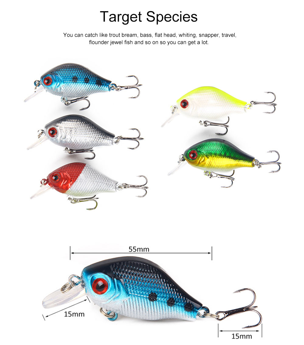 38 Outfit Fishing Lures with Various Style and Variety of Shape, Silicone Baits, Attractants for Saltwater and Freshwater 2