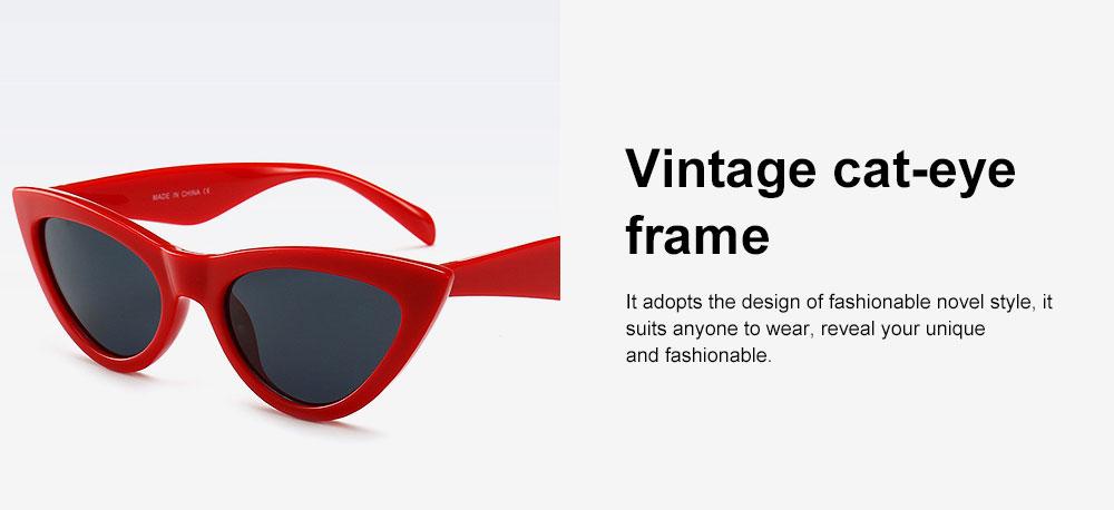 Plastic Frame Cat Sunglasses for Women, Narrow Frame Sun Glasses UV400 Protection Light Weight Lady Sunglasses 2019 2