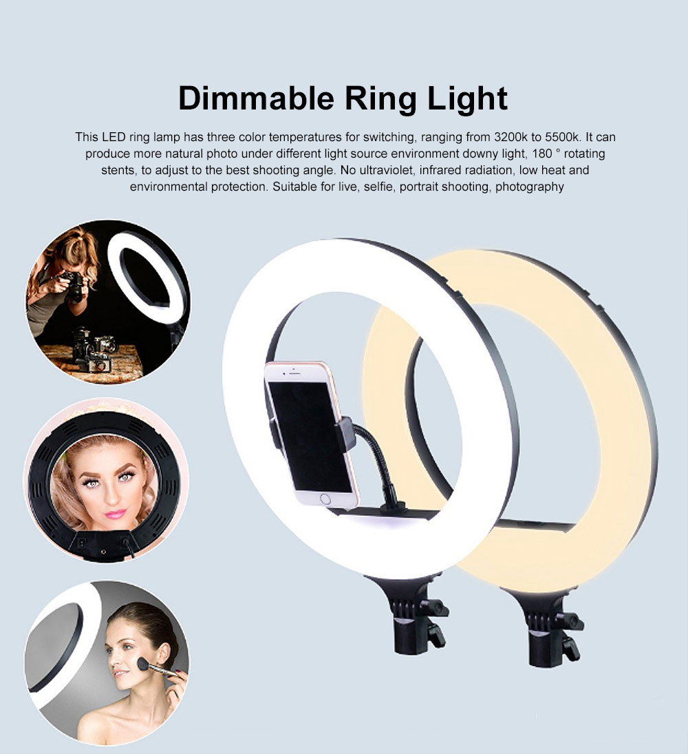 Selfie Desktop Ring Light, Dimmable Ring Light for YouTube Live Streaming, Portrait Photography LED Round Fill Light 12 inches 4